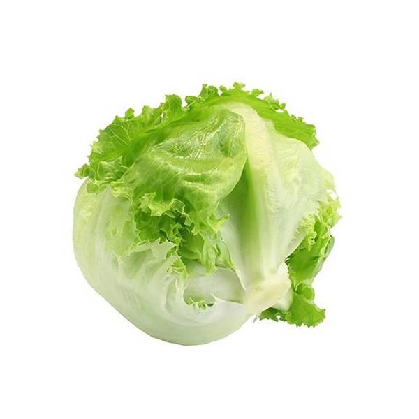 Salata Iceberg (kg)